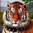 Amazons battle tigur