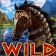 Amazons battle wild